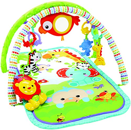 Fisher price 3 in 1 musical activity gym from fisher price for Chambre bebe toys r us